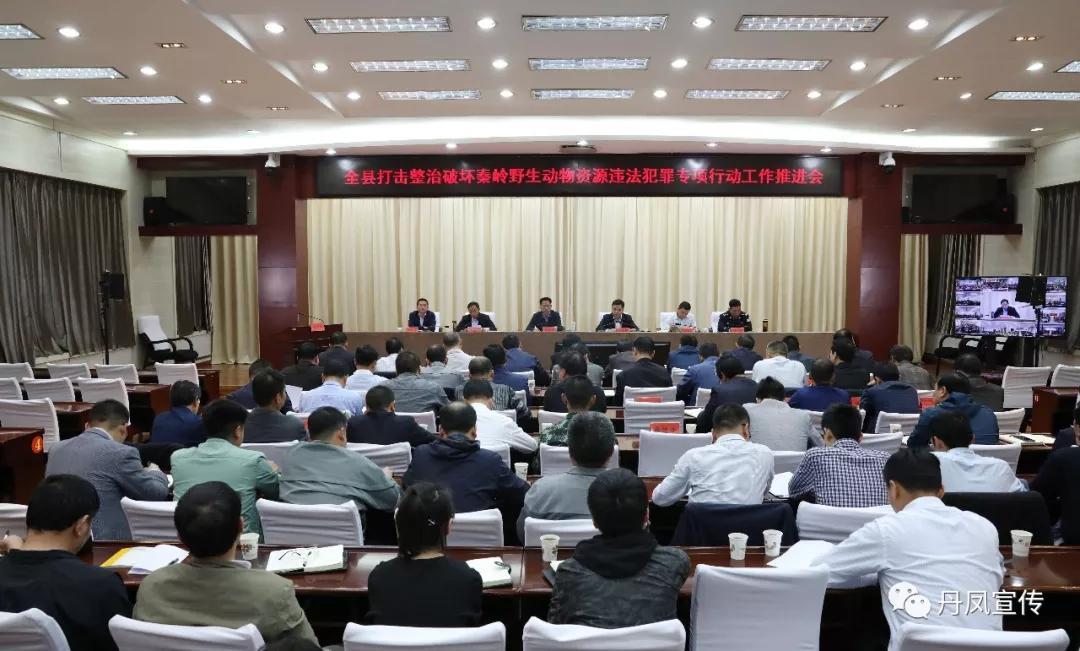 丹凤县召开工作推进会议对秦岭野生动物资源...